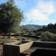 At the edge of the Meditation Hall terrace