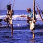Sinhalese Fishermen