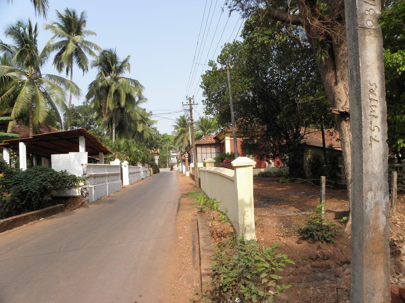 Neighborhood Walkabout